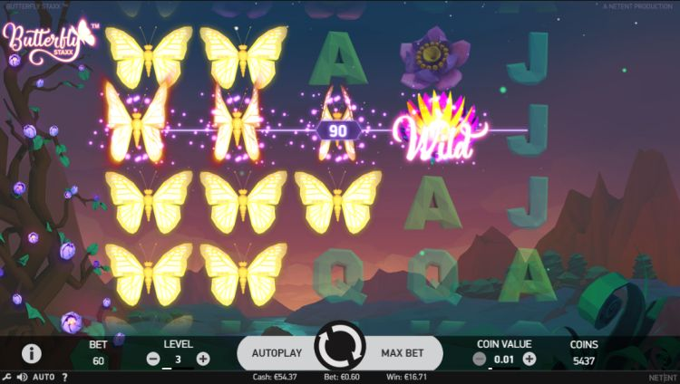 Butterfly Staxx big win