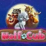 Wolf Cub netent review